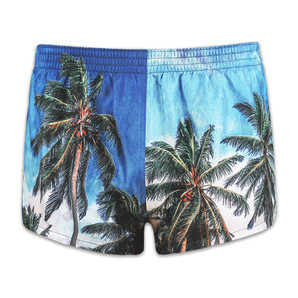DARKHINY(ダークシャイニー) Men's Silk Trunks -PLAM VIEW Real  Printing